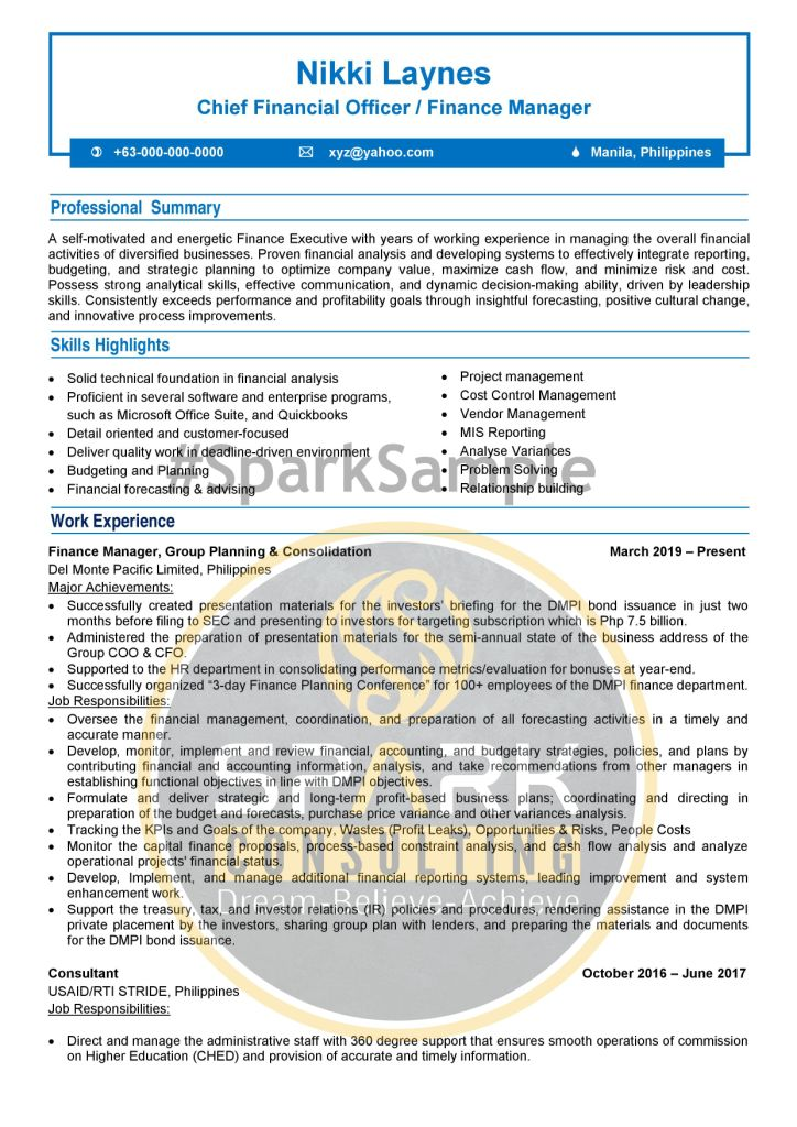 ATS Professional Chief Finance Officer Resume